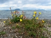 060308_lake_taupo08
