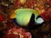 croisiere-similians-thailande-079.jpg