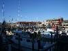 080901_fishermans_wharf13.jpg