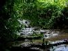 081121_palenque05.jpg