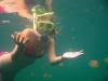 090819_jellyfish_lake05.jpg