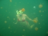 090819_jellyfish_lake07.jpg