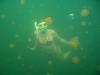 090819_jellyfish_lake07.jpg