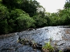 090920_waterfall11.jpg