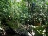 090920_waterfall13.jpg