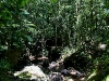 090920_waterfall14.jpg