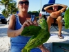 110206_beach_key_west06