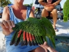110206_beach_key_west07
