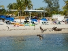 110206_beach_key_west10