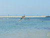 110206_beach_key_west13