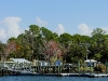 110218_crystal_river41