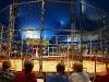 110219_circus_show01